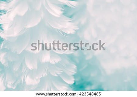 Fluffy white feather angel wings closeup on baby blue colored background - Fashion Color Trends Fall Winter 2016 2017 Set 2 - and light turquoise to Immature Blue color of Spring Summer 2017 #423548485