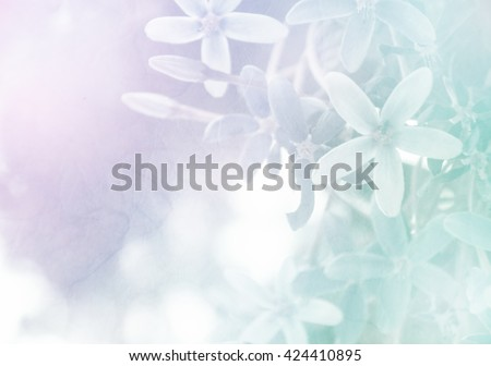 Soft flower background, made with color filters, unfocused #424410895