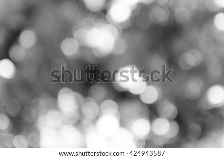 Gray black white bokeh out of focus background from nature forest #424943587