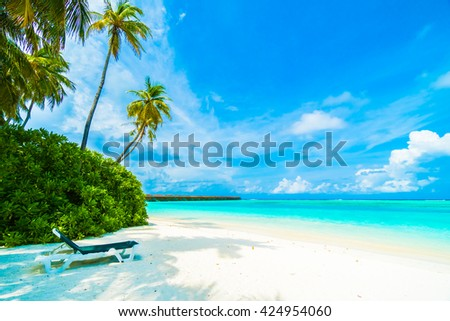 Beautiful tropical beach and sea in maldives island with coconut palm tree and blue sky background #424954060