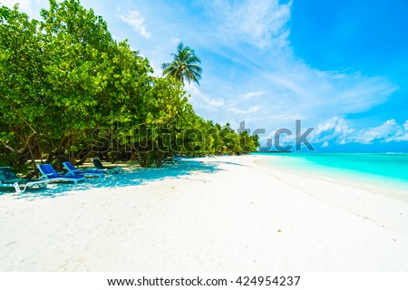 Beautiful tropical beach and sea in maldives island with coconut palm tree and blue sky background #424954237