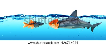 Deception Concept - Disguise Between Shark And Goldfish  Royalty-Free Stock Photo #426716044