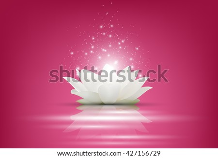Magic White Lotus flower on pink background.Vector #427156729