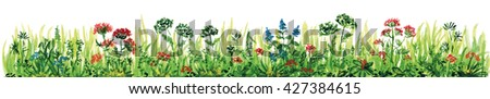 Watercolor hand drawn painted natural floral border with different plants, flowers and grass, part of the frame, the colorful artistic element for design and illustration #427384615