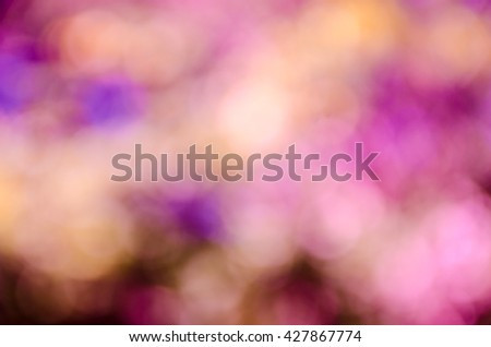 background with abstract blurred foliage and bright summer sunlight for your text or advertisment #427867774