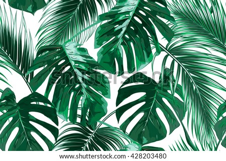 Tropical palm leaves, jungle leaves seamless vector floral pattern background Royalty-Free Stock Photo #428203480