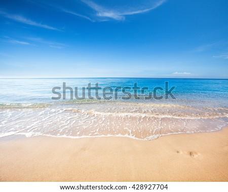 beach and tropical sea #428927704
