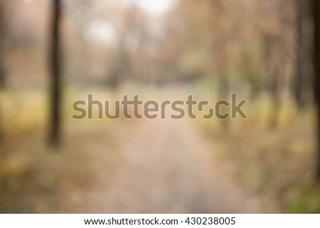 Autumn blurred bokeh background. Defocused park or forest landscape on a cloudy day bokeh abstract background. Template mock-up for for your design. #430238005