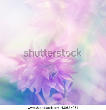 vintage color in soft color and blur style for background #430836031