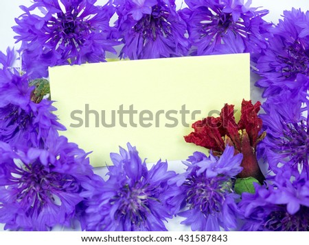 Notepad is beautiful, blue flowers, #431587843