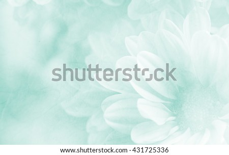 Soft flower background made with color filters, unfocused #431725336