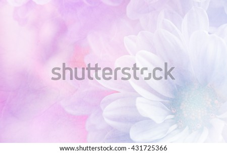 Soft flower background made with color filters, unfocused #431725366