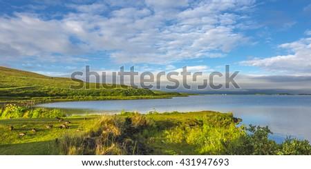 Icelandic colorful landscape on Iceland, summer, 2015 #431947693