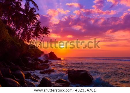Palm tress on tropical coast at sunset #432354781