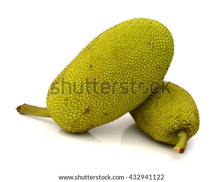 jackfruit isolated on white background #432941122