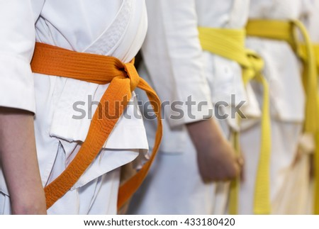 Children in kimono sitanding in a line on martial arts class Royalty-Free Stock Photo #433180420