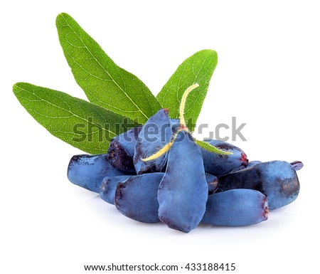 Fresh honeysuckle blue berry fruits with leaf isolated on white background #433188415