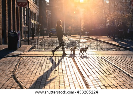 Brooklyn, New York City - April 17, 2016 : The woman take a walk with dogs at sunset on Brooklyn street, New York City, USA #433205224