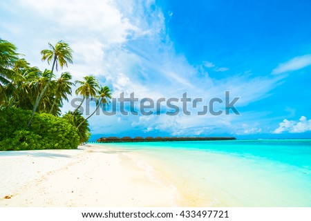 Beautiful tropical beach and sea in maldives island with coconut palm tree and blue sky background #433497721
