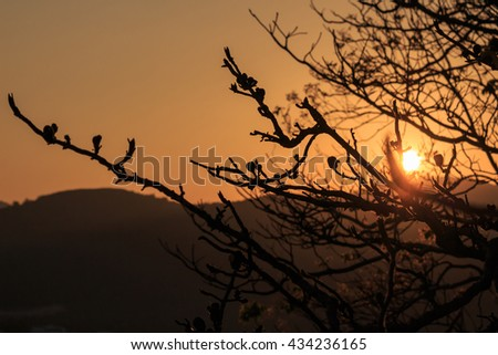 Hills and bright sky during sundown. Composition of the nature. #434236165