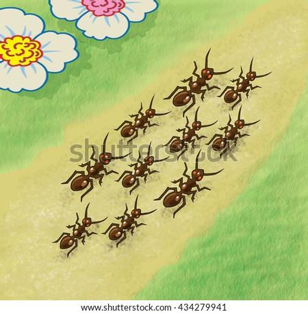 Ants walking along the path - illustration