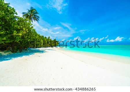 Beautiful tropical beach and sea in maldives island with coconut palm tree and blue sky background #434886265