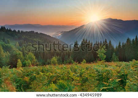 Scenic sunrise in the mountains with the fog. Beautiful Sunny summer landscape. #434945989