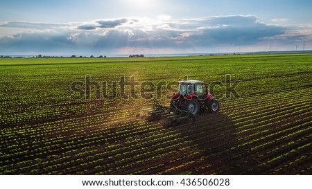 Tractor cultivating field at spring,aerial view Royalty-Free Stock Photo #436506028