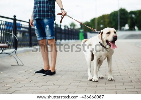 a teenager and a dog, friendship, young guy and a white labrador on the river bank #436666087