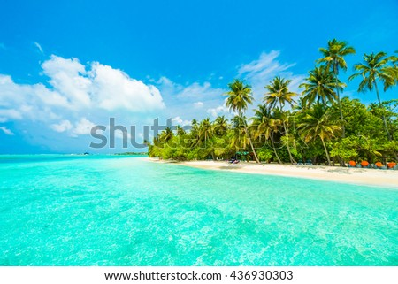 Beautiful tropical Maldives island with beach , sea , and coconut palm tree on blue sky for nature holiday vacation background concept -Boost up color Processing #436930303