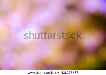 background with abstract blurred foliage and bright summer sunlight for your text or advertisment #438393667