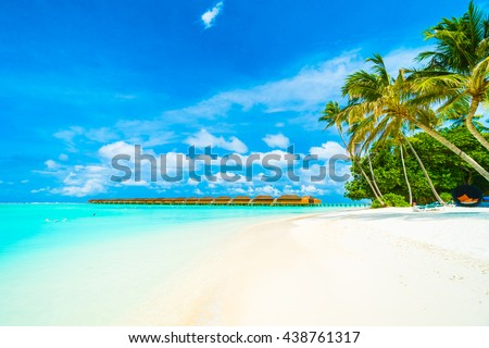 Beautiful tropical beach and sea in maldives island with coconut palm tree and blue sky background #438761317