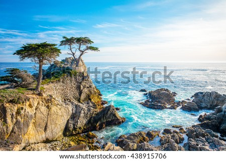The Lone Cypress, seen from the 17 Mile Drive, in Pebble Beach, California. Royalty-Free Stock Photo #438915706