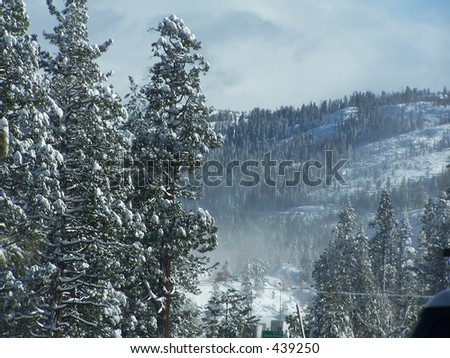 Snowy Valley in CA #439250