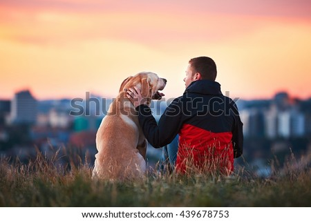 Enjoying sun. Man is caressing yellow labrador retriever. Young man sitting on the hill with his dog. Amazing sunrise in the city. Prague in Czech Republic. #439678753