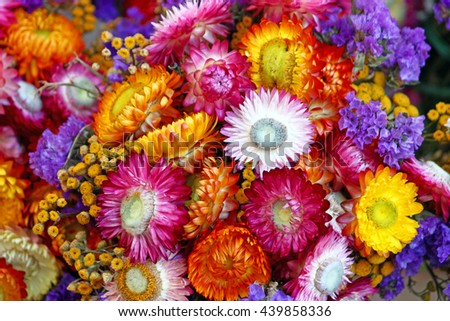 Autumn decoration of mix of colorful flowers, natural background #439858336