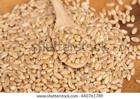 Wheat grain in wooden spoon on wooden background #440761789