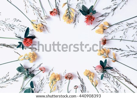 Summer background with wild flowers and herbs. Place for a replica. The top view. Minimal flat design. Vintage styling.