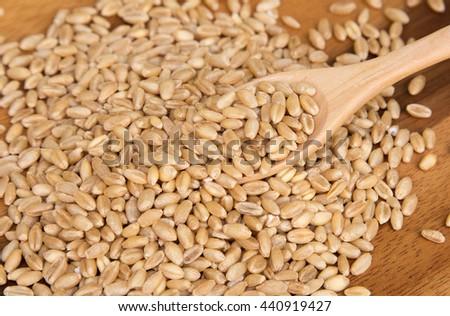 Wheat grain in wooden spoon on wooden background #440919427