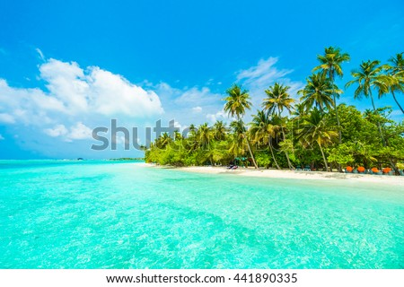 Beautiful tropical Maldives island with beach , sea , and coconut palm tree on blue sky for nature holiday vacation background concept -Boost up color Processing #441890335