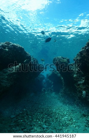 Small canyon underwater carved by swell into the reef, Huahine island, Pacific ocean, French Polynesia #441945187