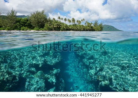 Landscape over and under water surface, tropical island shore with natural trench into the fore reef split by waterline, Huahine, Pacific ocean, French Polynesia #441945277