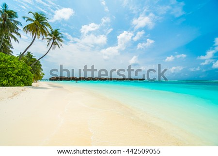 Beautiful tropical Maldives island with beach , sea , and coconut palm tree on blue sky for nature holiday vacation background concept -Boost up color Processing #442509055