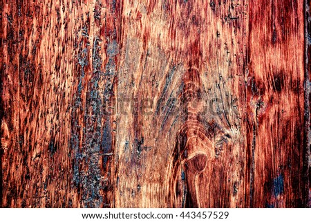 wood grungy background with space for your design #443457529