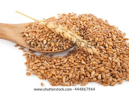 Wheat in wooden spoon #444867964