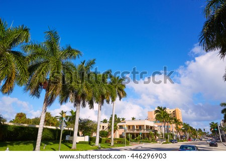 Del Ray Delray beach in Florida USA Palm trees street #446296903