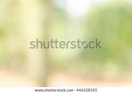 Green bokeh out of focus background from nature forest #446328505