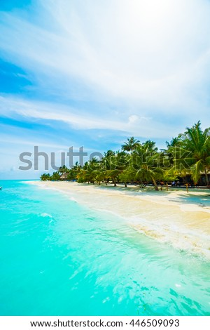 Beautiful tropical beach and sea in maldives island with coconut palm tree and blue sky background #446509093