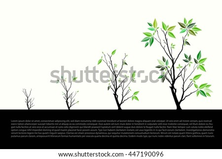 Trees Vector Illustrate Growing #447190096