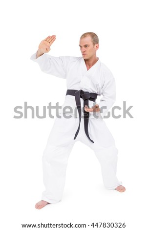 Fighter performing karate stance on white background #447830326